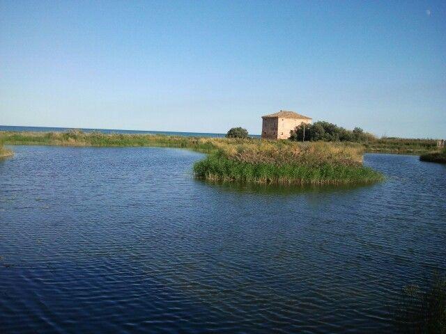 riserva naturale la sentina..San Benedetto del Tronto  Italy