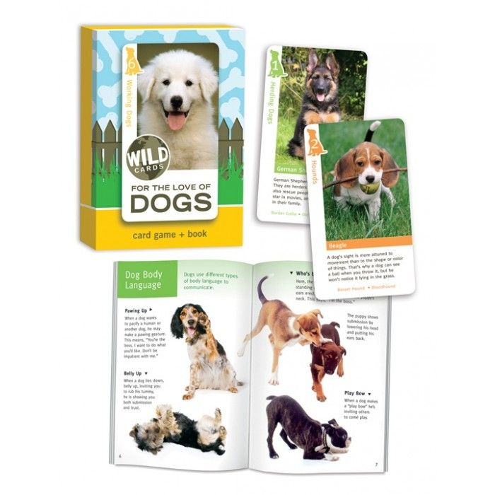 Wild Cards For Love of Dogs | Birdcage Press