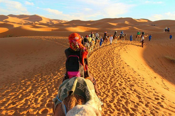 Caravan in the Sahara