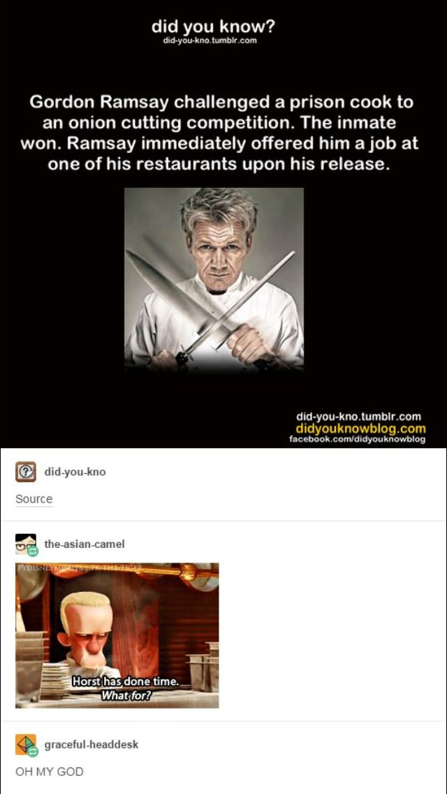Gordon Ramsey | funny Tumblr post | Ratatouille