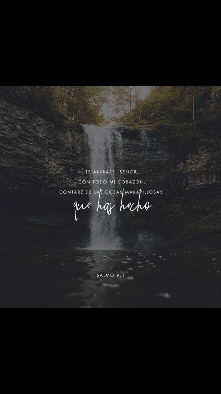 Dios mío, Dios altísimo, yo quiero alabarte de todo corazón. Quiero expresarte mi alegría; ¡quiero cantarte himnos y hablar de tus maravillas!  Salmos 9:1-2 TLA.