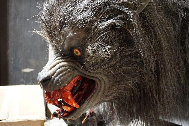 werewolf profile