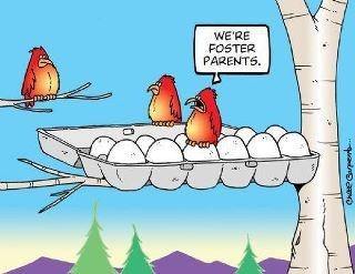 Foster parent humor.