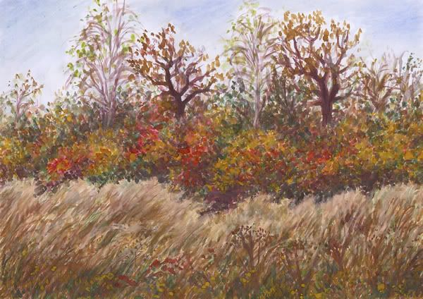 Autumn, watercolor and pastel by Jana Haasová, SeniorTip