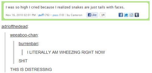 Haha. Oh tumblr... Lots of hilarious posts.