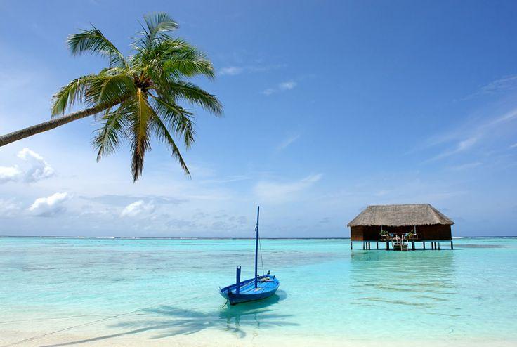 maldivene - Google-søk