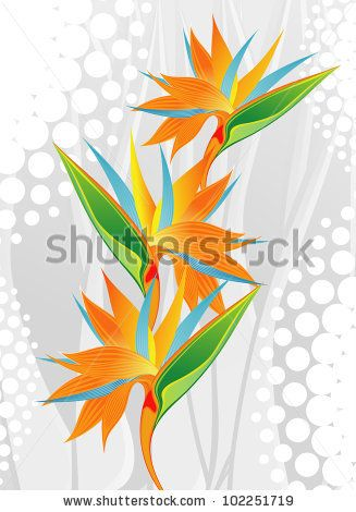 Flower (Botanical name - Strelitzia reginae) by mw2st, via Shutterstock