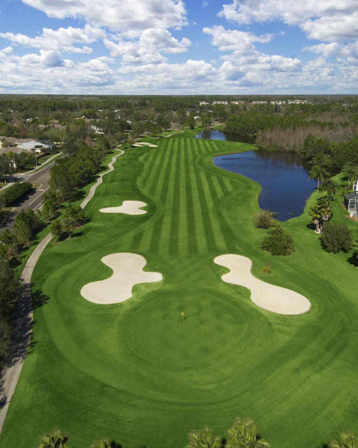 Best Golf Pinterest: 17 Best Tampa, Florida Golf Courses Images On Pinterest
