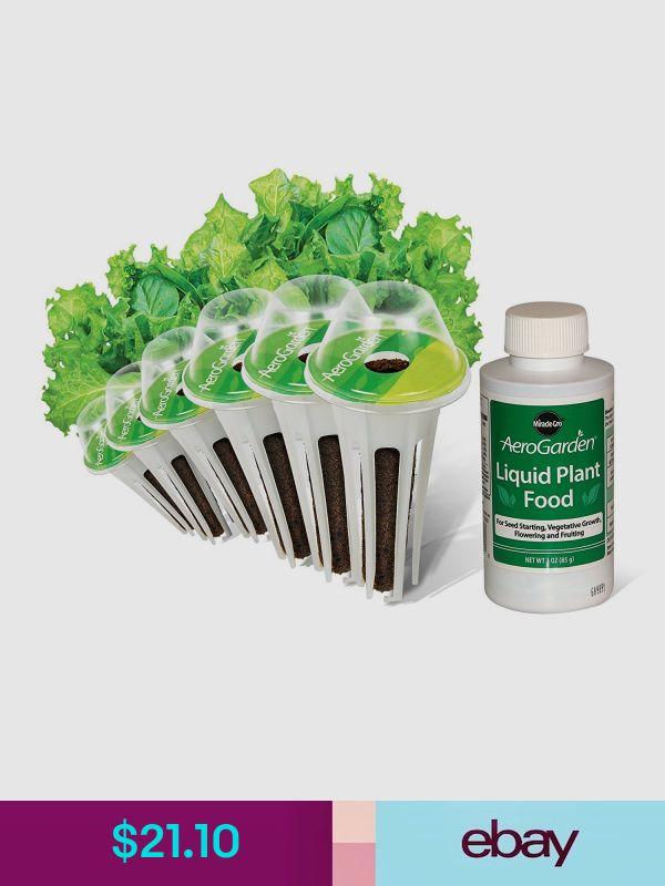 Aerogarden Hydroponics Systems Home Garden Lettuce 400 x 300