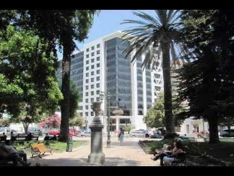 TALCA CHILE 2012 - 2013