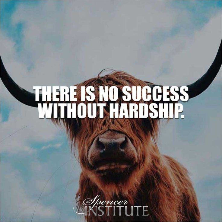 Success comes with hardship. A Career In Fitness As A Life Strategies Coach. Considered the gold standard in health and fitness Training. So we assure our clients that our programs, courses, online classes delivers exceptional result to them. Enroll on our online classes and courses for pesonal fitness trainer now! #careerchoice #lifecoachtraining #lifecoaching #lifecoachingschool  #personaltrainingcertification #lifestrategiescoachcertification