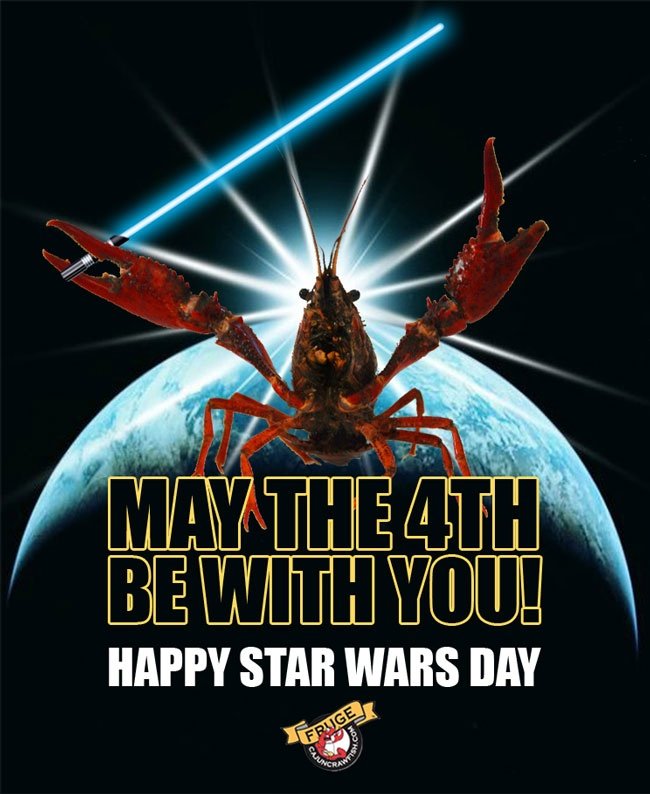 May The 4th Be With You Best: 17 Best Images About Creative Crawfish On Pinterest