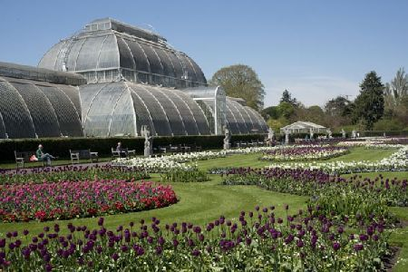 Kew Gardens Visit and River Cruise from Central Grab someone special and spend an unforgettable day taking in some of London™s most historic and famous attractions with this wonderful day out for two. You™ll begin in the heart of the capital at Wes http://www.MightGet.com/february-2017-2/kew-gardens-visit-and-river-cruise-from-central.asp