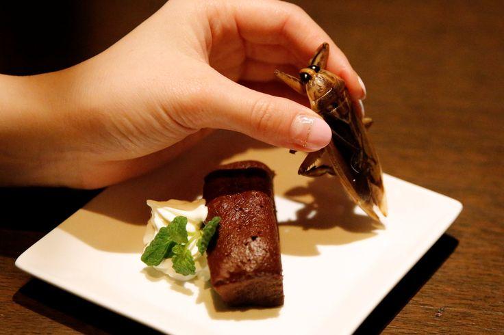 Hidangan Berbahan Serangga, Menu Orang Jepang Rayakan Valentine https://malangtoday.net/wp-content/uploads/2017/02/menu-serangga.jpg MALANGTODAY.NET –Perayaan Hari Valentine identik dengan cokelat, namun tidak dengan negara satu ini. Sebuah resto di Tokyo, Jepang menyediakan menu unik berbahan serangga. Menu unik ini diperuntukan untuk pasangan-pasangan yang berani dan tidak merasa jijik.Menu ini menyediakan makanan d... https://malangtoday.net/inspirasi/gaya-hidup/