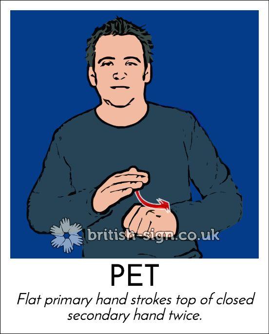 Today's #BritishSignLanguage sign is: PET #DressUpYourPetDay