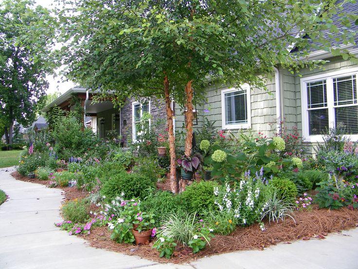 25 beautiful limelight hydrangea ideas on pinterest for Garden designs with hydrangeas