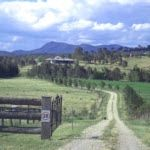 The Little Black Cow Farm Stay, NSW - Other NSW 2335 - Travel with Children