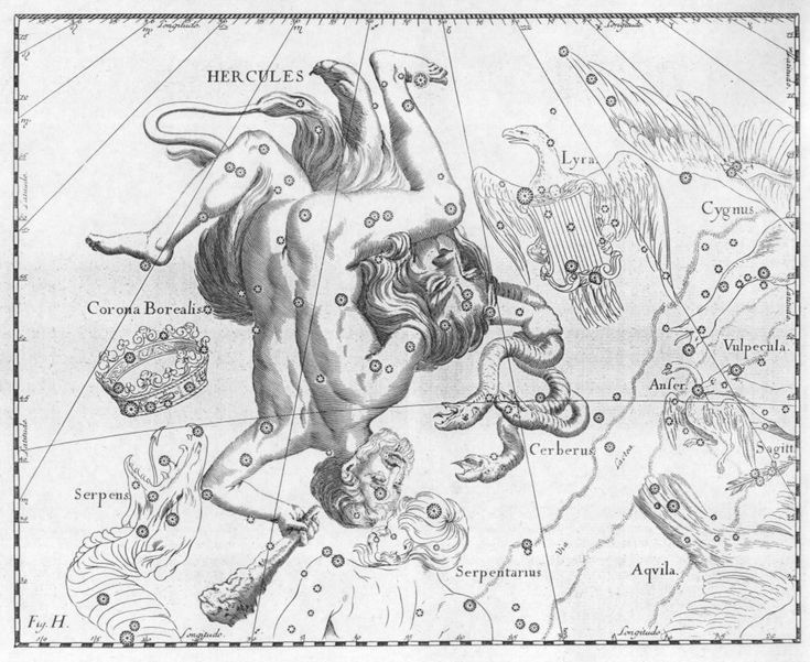 Hercules Constellation: by Johannes Hevelius, 1690.