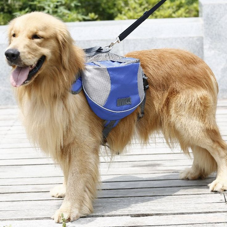 2016 New Pet Dog Bag Outdoor Sports Food and Toy Backpack for Dogs