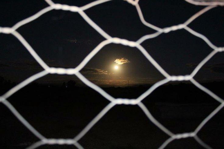 Agter die draad skyn die maan  -  photo: Elmar