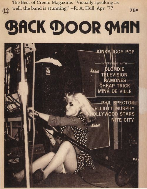 i wanna be your back door man