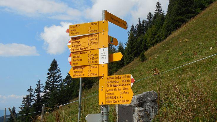 Pass no 14: Col de chaude (Via Alpina Switzerland)