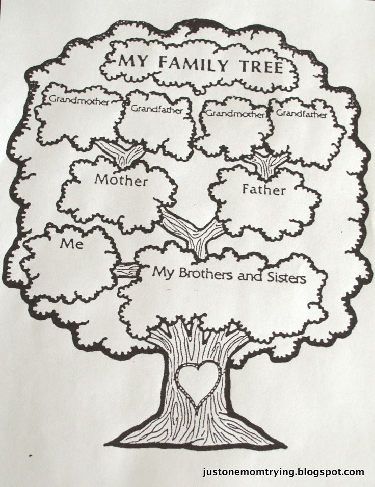 The 73 Best Genealogy Chart Images On Pinterest Family Tree Chart