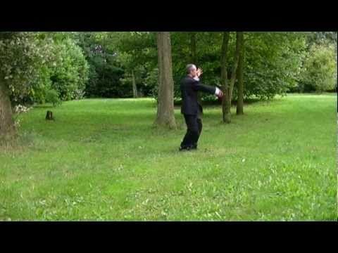 ▶ Tai Chi Les 24 Postures par Vlady et Michèle Stévanovitch.mp4 - YouTube