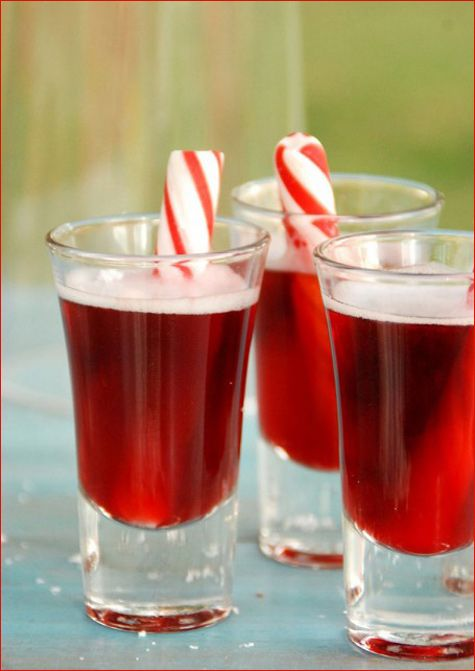 Xmas shooters  ChristmasInJuly_partyideas_1