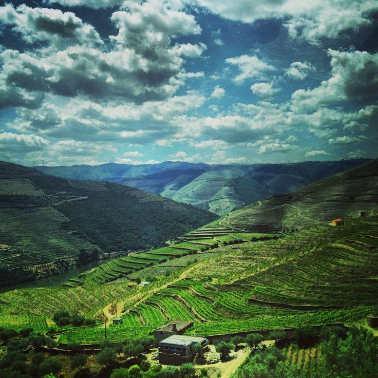 AFAR.com Highlight: A Dream Meal in the Douro by Sivan Askayo