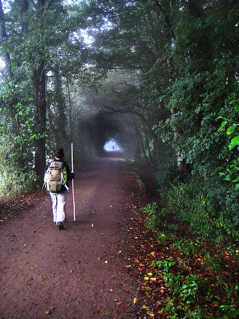 Camino de Santiago by Morsul, via Flickr. I will walk the pilgrimage journey of the Camino de Santiago someday.