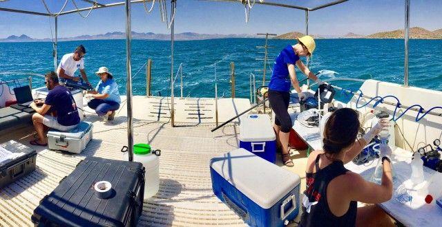Concluye la tercera campaña de caracterización físico-química, de corrientes y estado ecológico del Mar Menor