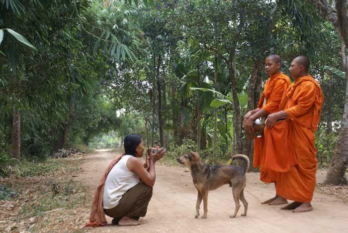 Giften aan de monniken. Hiermee worden de monniken voorzien in hun levensonderhoud.