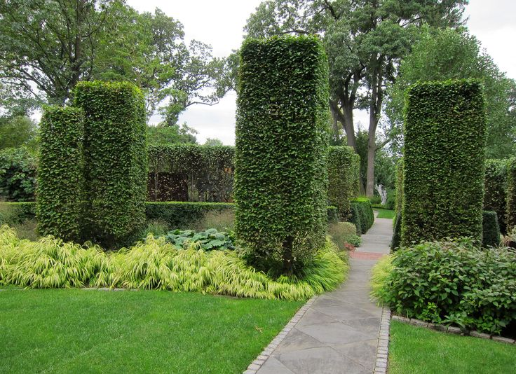 Garden Design Hedges 144 best hedges images on pinterest | hedges, garden ideas and gardens