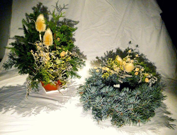 Sada: miska přírodní, věnec ze stříbrného smrku | set: nature bowl, whreath made of silver spruce