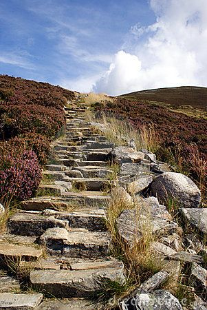 A man-made stairway in the Scottish highlands.  ღ♥Please feel free to repin ♥ღ www.myvintagecameras.com