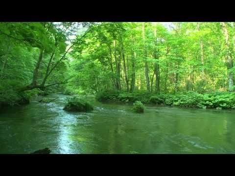 ▶ Relaxing Piano Music.calming, soothing,relaxing,10 min - YouTube