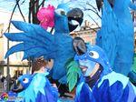 Carnevale Borgotarese 2015