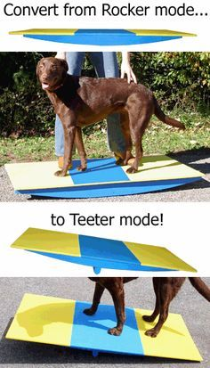 Dog Rocker Board Teeter Trainer (part Buja Board or Wobble Board) by Affordable Agility