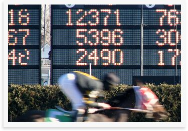 We know that being able to get the best odds for races or sporting events can be the difference between breaking even and a big win and we understand the value of bonuses, promotions and free bets that increase your bankroll. https://www.bettingrewards.com.au #Game on