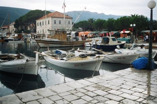 Picture of Jelsa, Hvar Island