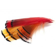 Hand Selected Golden Neck Feathers Large If you like to tie Irish type of flies, loch style of wet flies or other types of fishing flies, then these fly tying feathers are the best. We provide the best quality for our fly tyiers.
