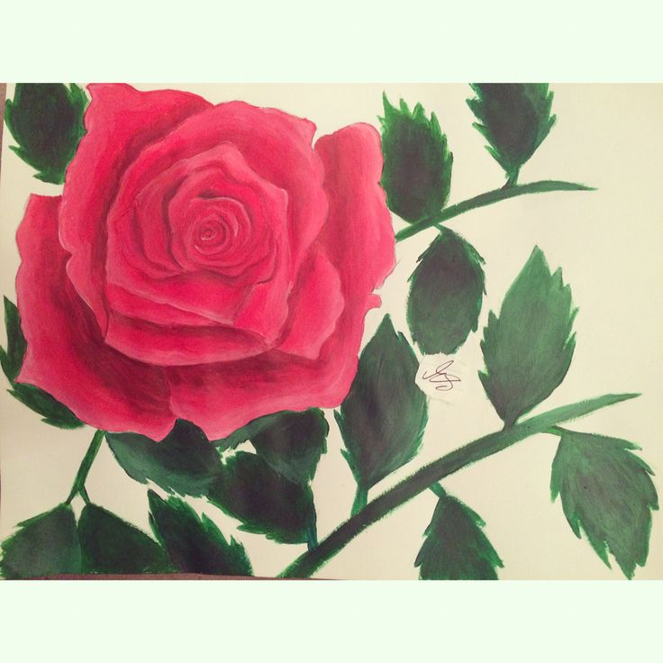 Rose.Done with Acrylic Paints.