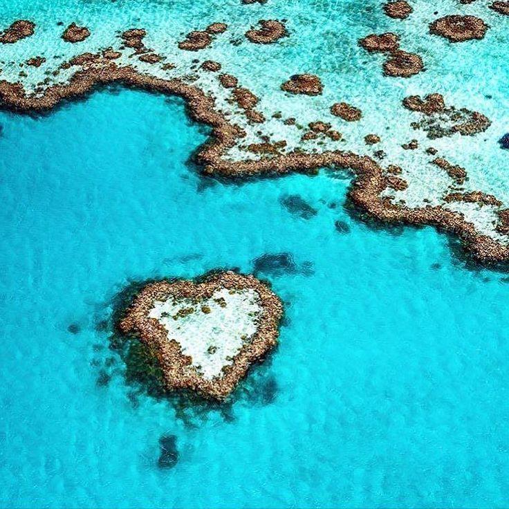 Avustralya'nın kuzeydoğu kıyılarında Büyük Set Resifi'nde bulunan canlı mercanların oluşturduğu doğal  bir yapı olan Kalp Resifi'nden Günaydın   #boutiquestyletravel #tailormade #tailormadetravel #travel #luxurytravel #balayı #honeymoon #greatbarrierreef #heartreef #avustralya #australia #kişiyeözelseyahat  #travelwonder #kişiyeözel #sizeözel  #instatraveling  #travelbug #traveler #travelphotos #lüksseyahat #travelinspiration #traveldeeper #travelignites  #likesforlikes #wanderlust by…