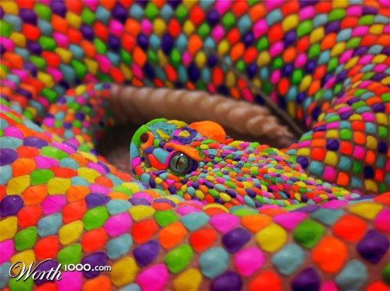 The rainbow snake - Worth1000 Contests