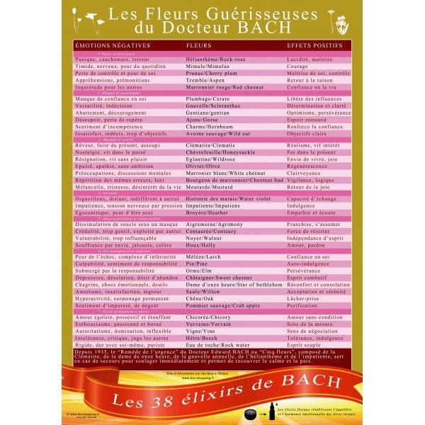 Très beau poster en couleur comprenant toutes les indications sur les remèdes des Fleurs de Bach et de nombreuses informations sur leur utilisation
