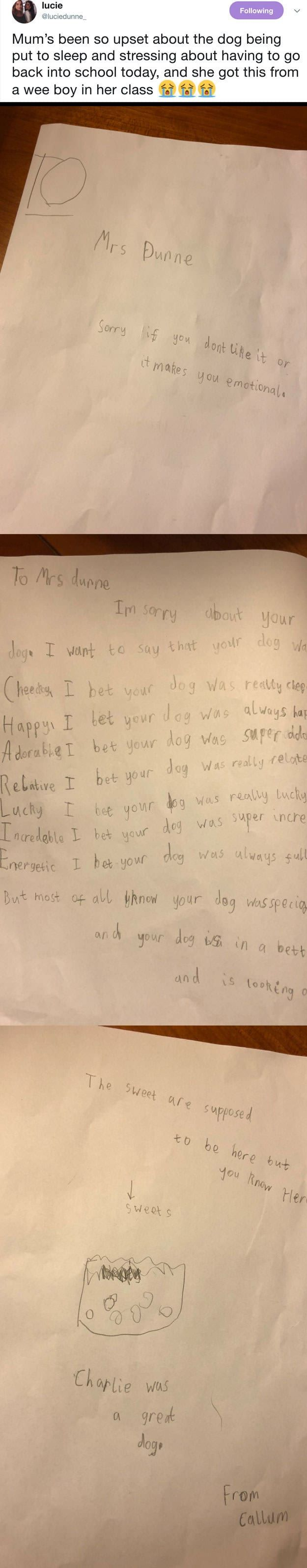 A Student Offered Condolences To His Teacher After Her Dog Died And It's So Sweet