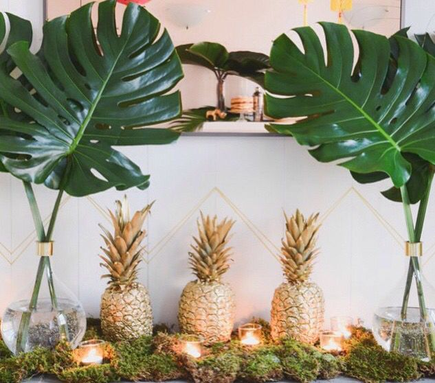 I don't like the pineapples, but the plants are great