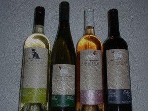 Tasting Thursday 24th April: Raidis Estate Wines Cabernet Sauvignon Pinot Gris Riesling Sauvignon Blanc Tasting in store 5-8pm