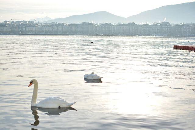 Geneve lake on sunrise Bain de Paquis, пирс на Женевском озере